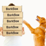 6 strange but real entrepreneurial business ideas like BarkBox