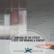 survival of the fittest - 5 keys for growing a startup
