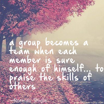 """""""A group becomes a team when each member is sure enough of himself and his contribution to praise the skills of others."""" —Norman Shidle"""